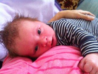 crazy newborn hair
